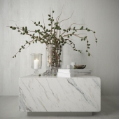 Decor with branches