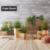 Crate & Barrel planter set