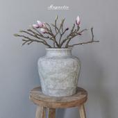 Magnolia in concrete vase