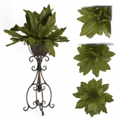 Uttermost_Costa del Sol, Potted Greenery