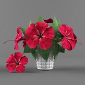 Flowers vase and Hibiscus