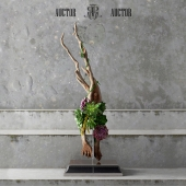 Wood_Decor_AUCTOR