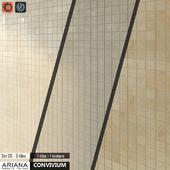 ARIANA CONVIVIUM Set 09