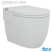 Roca In Tank