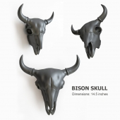 bison scull