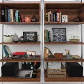 Bookcase_with_decorative_set
