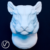 plaster head of a lioness