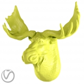 Gypsum moose head