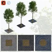 Деревья и решетки