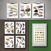Botanical Vintage Book Pages. 24 Prints (set 3)