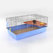 guinea pig skinny