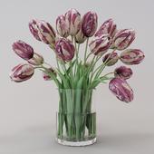 Rembrandt_tulips