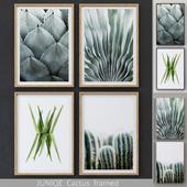 Cactus framed