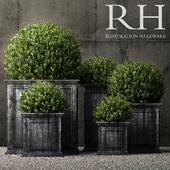 Restoration Hardware estate zinc framed panel planters