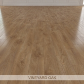 VINEYARD OAK