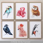 Birds framed