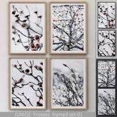 Proteas framed set-02