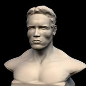 Arnold Schwarzenegger  Print this page