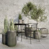 Outdoor_plant_set