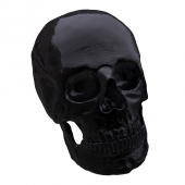 Decor skull