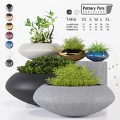 Potterypots six
