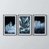 Botanical theme paintings4