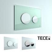 TECE loop