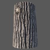 Material of the poplar bark