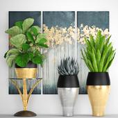 Коллекция растений 90. Luxury plants
