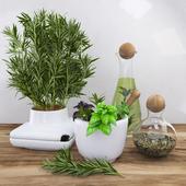 Декор с пряными травами - розмарин