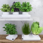 Пряные травы для кухни в кашпо от Sagaform