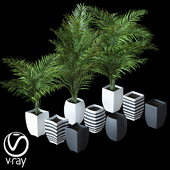 Home plant v4_2 (Realistic)