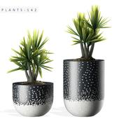 PLANTS 142