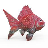 gold fish(vray GGX)