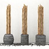 Decor of bamboo / Decor of bamboo