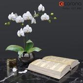 Decorative set1