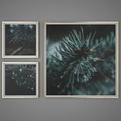 Set of paintings 47