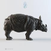 Rhinoceros Clara