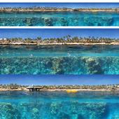 Панорама берега и подводного мира