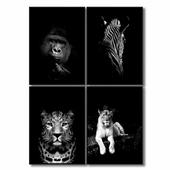 Набор постеров с изображением зверей - горилла, зебра, леопард, лев.