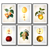 Posters with fruit for the kitchen.