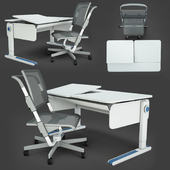 Function ergonomic desks and chairs