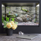 Декоративный набор с аквариумом