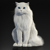Turkish Angora. 3d model with a skeleton