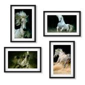 Horses from photographer Wojtek Kwiatkowski (Set 01).