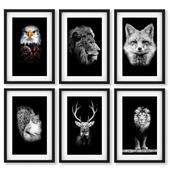 Постеры с животными - белка, орёл, лиса, олень, лев.