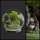 Florarium Bonsai