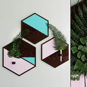 Hexagon plant hanger with moss and fern sprigs by WoodaHome
