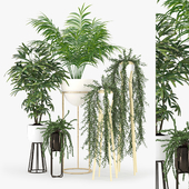 Plant Set 02
