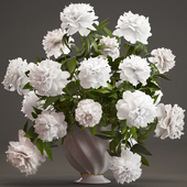 Collection of flowers 37. White Peonies.